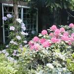 Plantings & Arbor