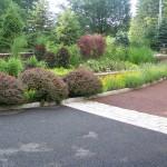 Driveway & Plantings