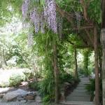 Arbor & Stone Path
