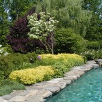 Natural Stone Coping on Pool & Plantings