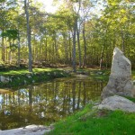 Collection Pond with Stone Sculpture