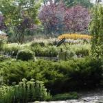 Walks and 4 Season Planting of Graded Hillside