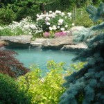 Naturalized Pool with Stone Coping and Rock Installation