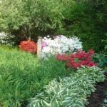 Secret Garden Katonah