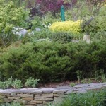 Stone Walls for Tiered Garden