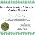 ISA Cetrificate