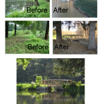 Fairview Before and After Pond Dredge