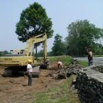 FDR Library Tree Transplant